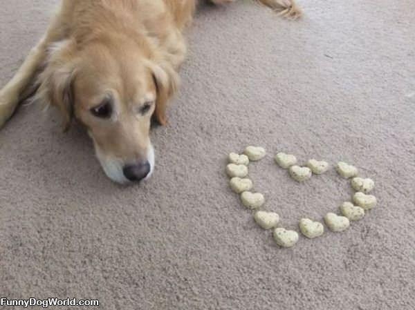 Heart Dog Treats