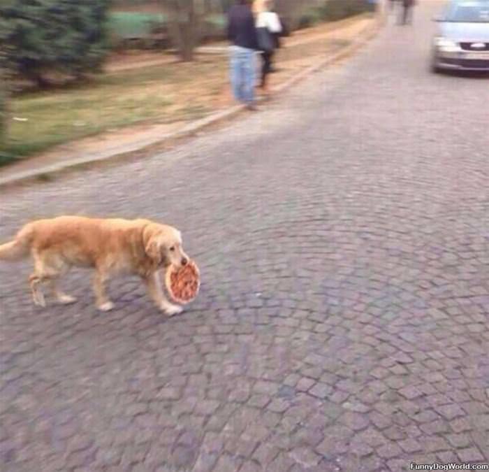 I Got A Pizza