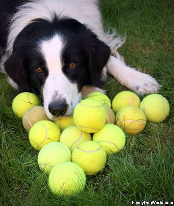 I Got Lots Of Balls
