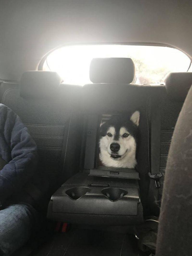 Ill Take This Seat