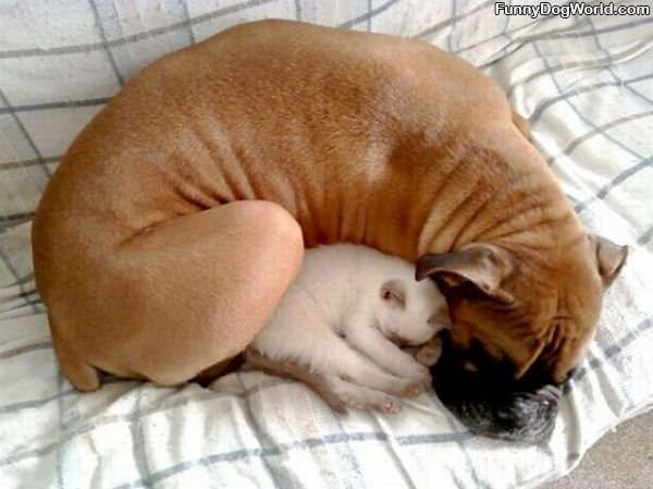 Keep Each Other Warm