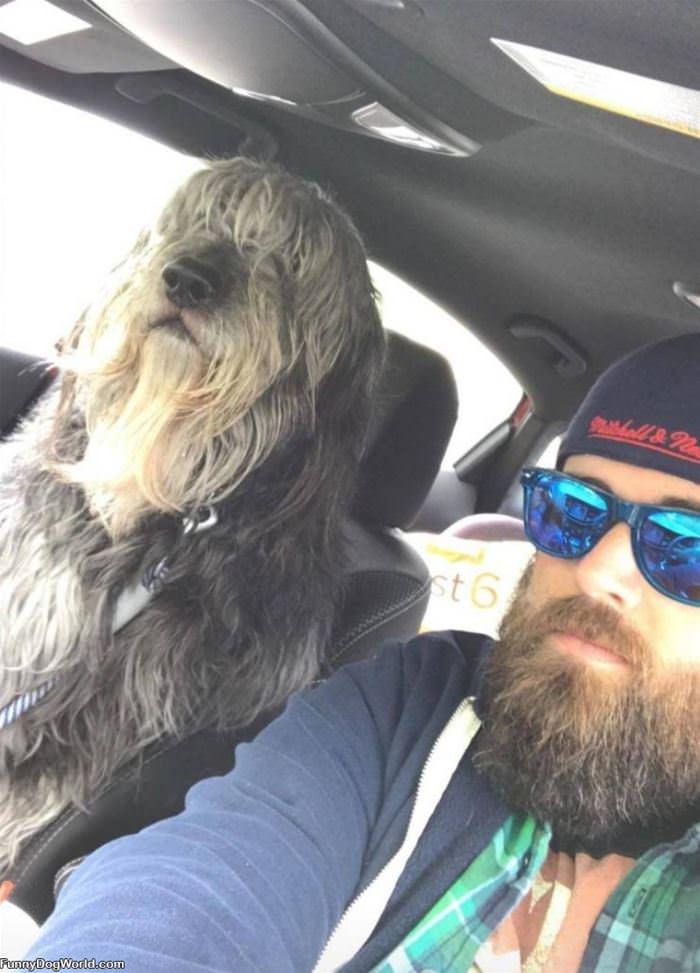 Matching Beards