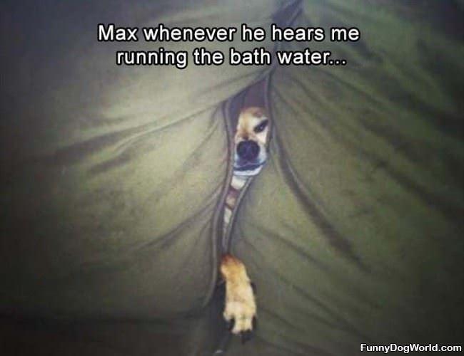 Running The Bath