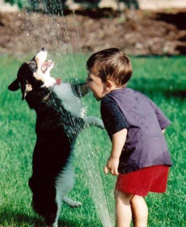 Sharing The Sprinkler