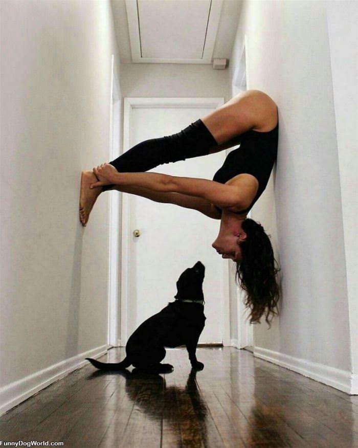 Some Interesting Yoga