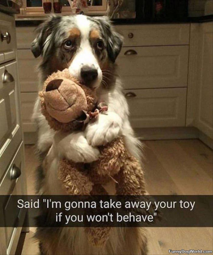 Taking Your Toy Away